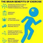 Exercise – The Energy Balance Pyramid